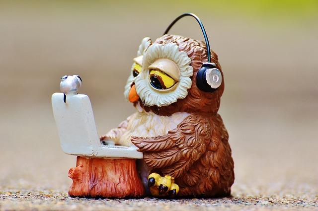 owl-947734_640
